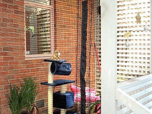 Cat Netting 574