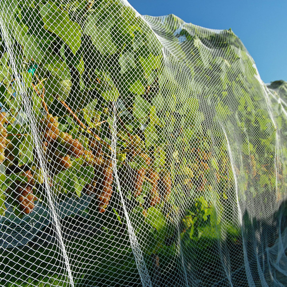 Agriculture Netting by Quin Sports and Nets
